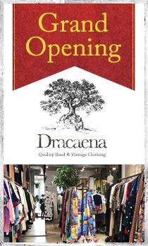 ドラセナ店舗オープン