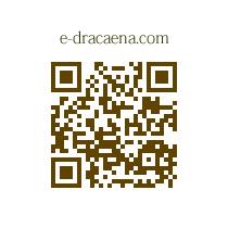e-dracaena.com QRコード